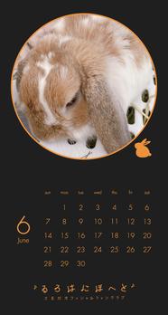 Calendar 2020.06 Smartphone