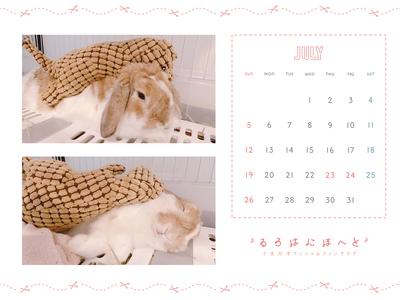 Calendar 2020.07 1600-1200