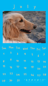 Calendar 2018.07 Smartphone